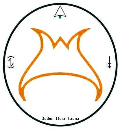 Boden/Flora/Fauna